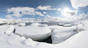Antarctic winter PANORAMA Royalty Free Stock Photography