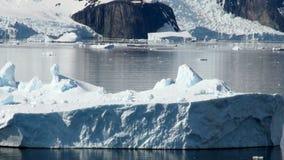 Antarctica zbiory