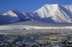 antarctica Fotografia Royalty Free