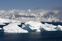 Antarctica. Cuverville island and icebergs in antarctica stock photo