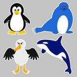 Antarctica Animals. Cartoon illustration of Antarctica animals stock illustration