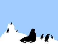 Antarctica animals scenario. Vector illustration of view of iceberg and typical endemic animals from antarctica as penguins, sea gulls and seal Royalty Free Stock Photography