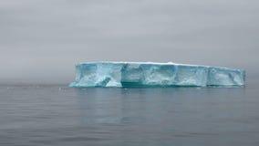 Antarctica - Antarctic Peninsula - Tabular Iceberg in Bransfield Strait Stock Image