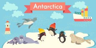 Antarctica cartoon set. Penguin, walrus, seal, lighthouse, boat. Royalty Free Stock Photos