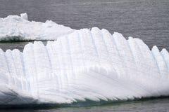Antarctica - góry lodowa - zbliżenie Obraz Stock