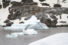 Antarctica - Icebergs And Penguins Stock Photography