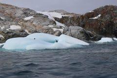 Antarctica - krajobraz Zdjęcie Royalty Free