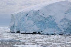 Antarctica - krajobraz Fotografia Stock