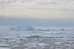 Antarctica - Landscape Royalty Free Stock Photo