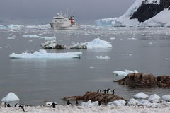 Antarctica - Landscape Stock Images