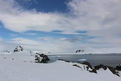 Antarctica - Landscape Royalty Free Stock Photo