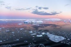 antarctica morza weddell Zdjęcia Royalty Free