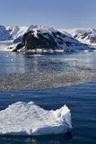 Antarctica - Paradise Bay Royalty Free Stock Image