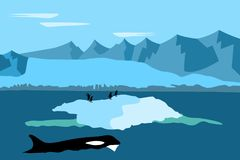 Antarctica with penguins and whale stock photography
