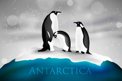 Antarctica with penguins. And snow arctic, cold stock illustration