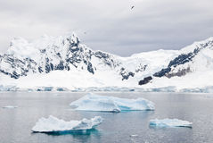 Antarctica - Piękna sceneria Zdjęcia Royalty Free