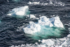 Antarctica - Pieces Of Floating Ice Stock Photography