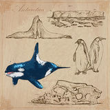 Antarctica: Podróż dookoła świata Wektorowi rysunki royalty ilustracja