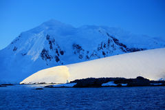 Antarctica Shore Royalty Free Stock Images
