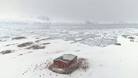 Antarctica station building surrounded by penguins