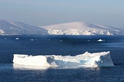 Antarctica on a Sunny day- Antarctic Peninsula - Huge Icebergs and blue sky. stock image