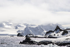 Antarctica Royalty Free Stock Photos