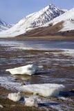 Antarcticahaven - Groenland Stock Fotografie