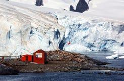 antarctickontinent Arkivfoton