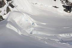 antarctisch Royalty-vrije Stock Foto's