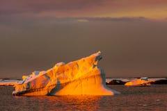 Antarctische gletsjer Royalty-vrije Stock Foto's