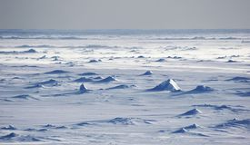 Antarctische snowfields Stock Fotografie