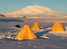 Antarctische vulkaan stock afbeeldingen