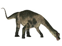 Antarctosaurus Royalty Free Stock Photos