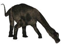 Antarctosaurus - 3D Dinosaur Royalty Free Stock Image