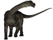 Antarctosaurus - 3D Dinosaur Royalty Free Stock Photos
