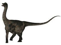 Antarctosaurus - 3D Dinosaur Royalty Free Stock Images