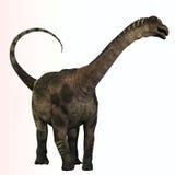 Antarctosaurus Profile. Antarctosaurus is a genus of titanosaurian sauropod from the Cretaceous Period of South Africa Royalty Free Stock Photos