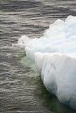 Antarktis - isberg - Closeup Fotografering för Bildbyråer