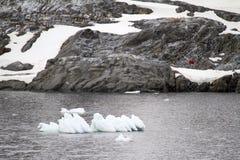 Antarktis - isberg och pingvin Arkivfoton