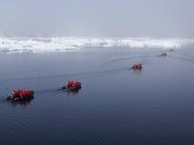 Antarktis kryssning Royaltyfri Foto