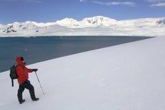 Antarktis - södra Shetland öar Royaltyfri Fotografi