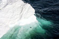 Antarktis - stycke av att sväva is Arkivfoto