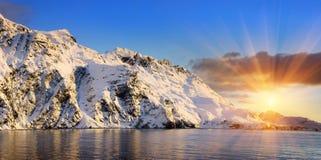 Antarktische Inselstr. Georgia Lizenzfreies Stockfoto