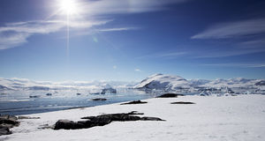 Antarktische Landschaft Stockbilder