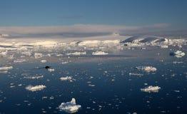 Antarktische Landschaft Stockbild