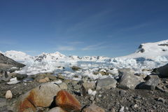 Antarktishamnparadis Fotografering för Bildbyråer