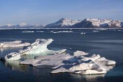 Antarktisk halvö - Antarktis Arkivbild