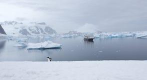 Antarktiskt landskap Arkivfoton