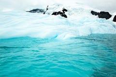 Antarktyczny lodowa spływanie w ocean Fotografia Stock