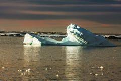 Antarktyczny lodowiec Fotografia Royalty Free